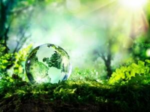 Javaslatkérés a Környezetvédelmi Tagozat kitüntetéseire